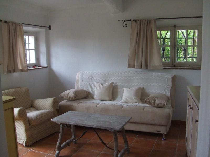Ver parcial salón con sofá y sillón