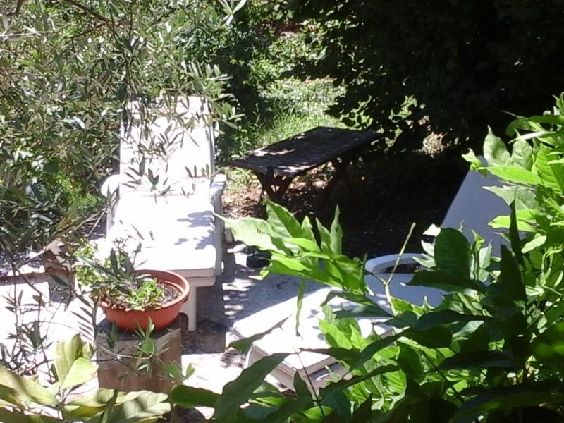 vista terraza tumbonas y parasol. tranquila, aislada, ideal para el bronceado