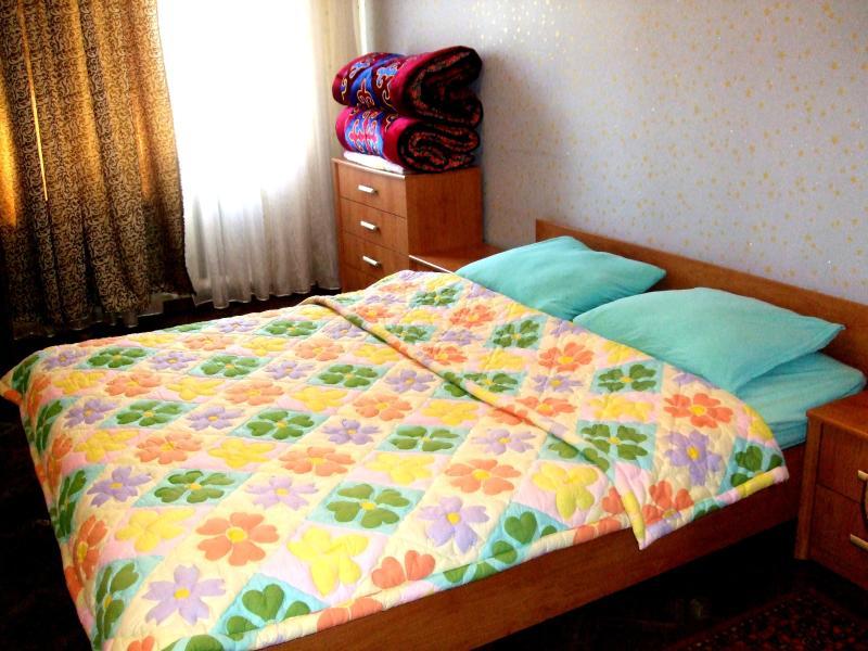 Safe and Cozy Home in Bishkek, vacation rental in Kyrgyzstan