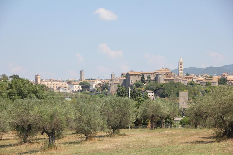 Immersi nel verde a pochi passi dal centro storico medioevale e dalle Terme dei Papi