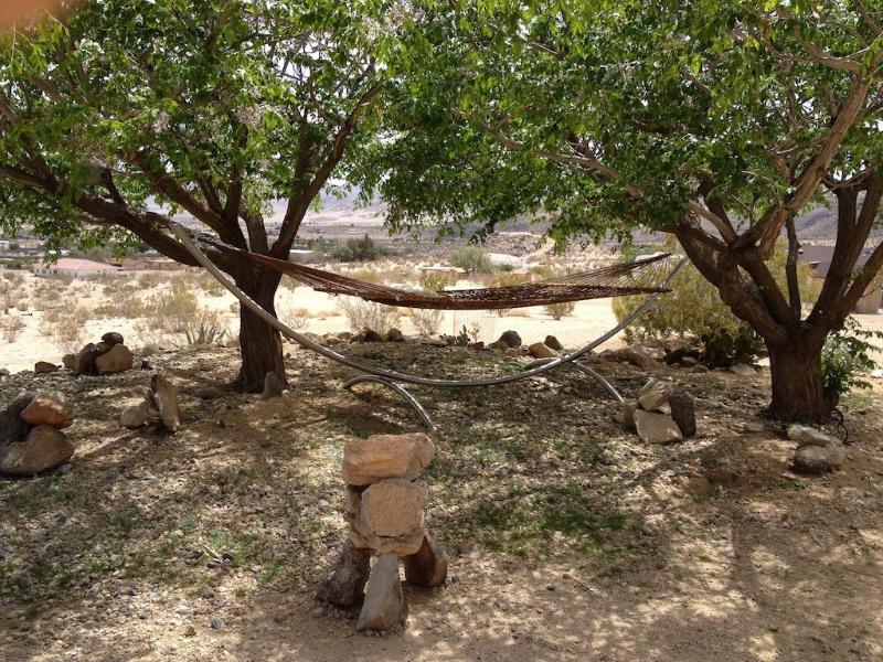 jardim com árvores e rede para relaxar à sombra