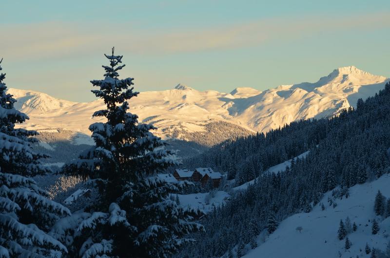 vue sur le massif du Mont Blanc (Ouest)