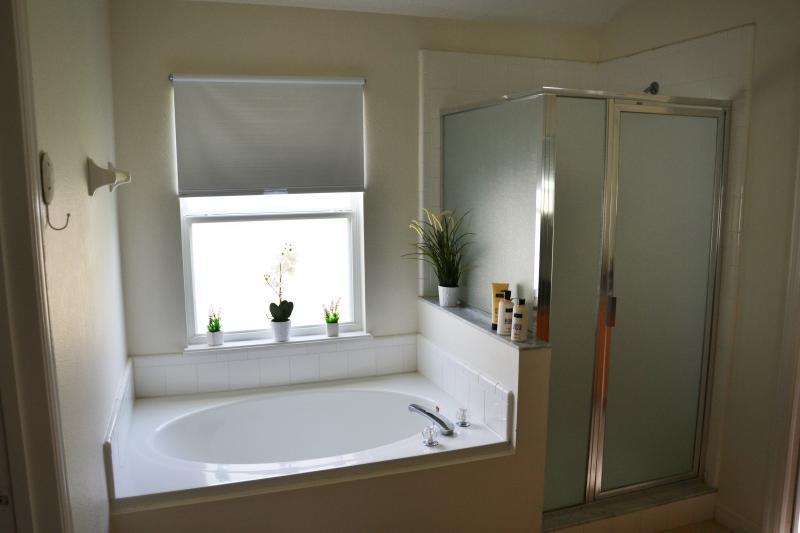 Bathroom of the king master bedroom