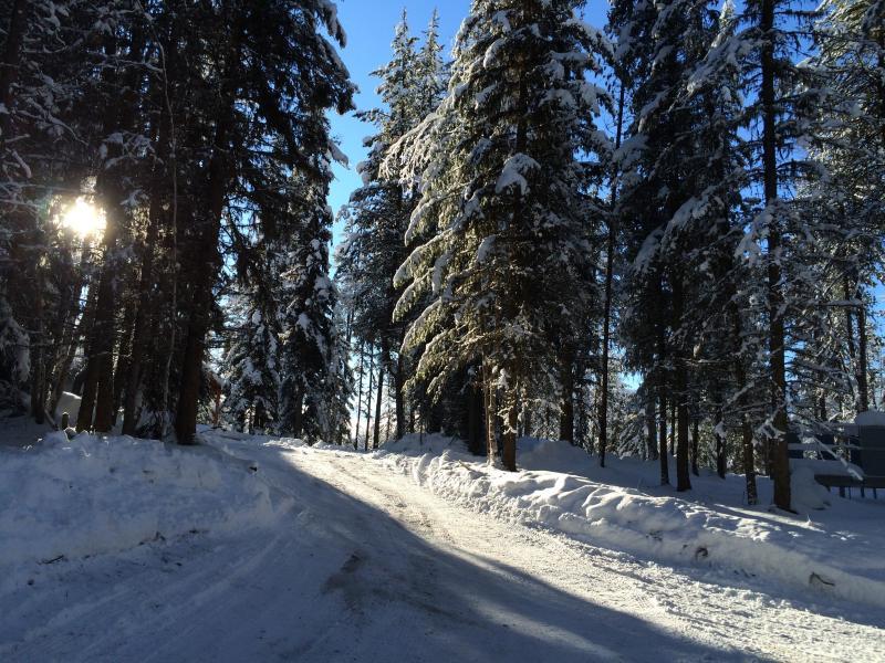 Driveway Approach | The Ridge At Glacier, MT