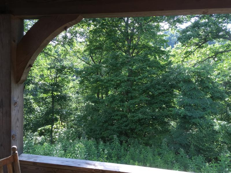 Back deck/balcony overlooks woods