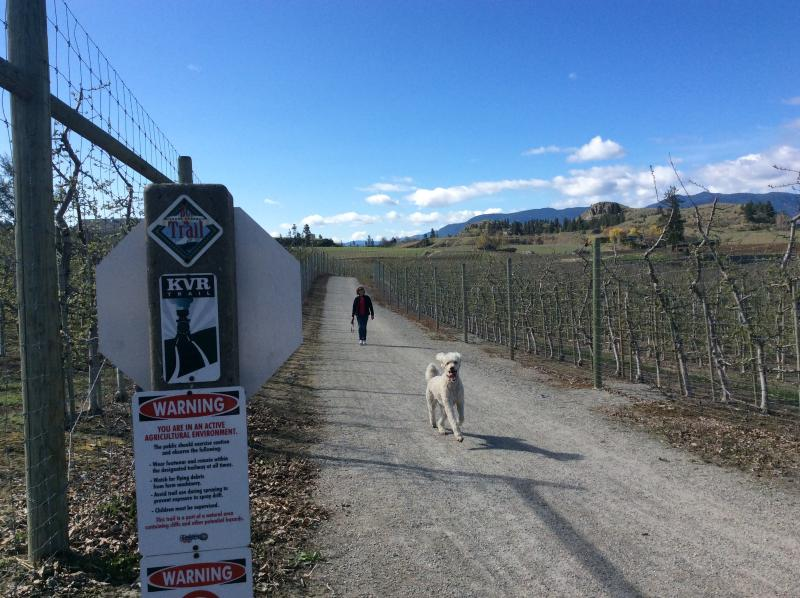 Walking the dog on the KVR Trail. The KVR Trail starts right across the road from the suite