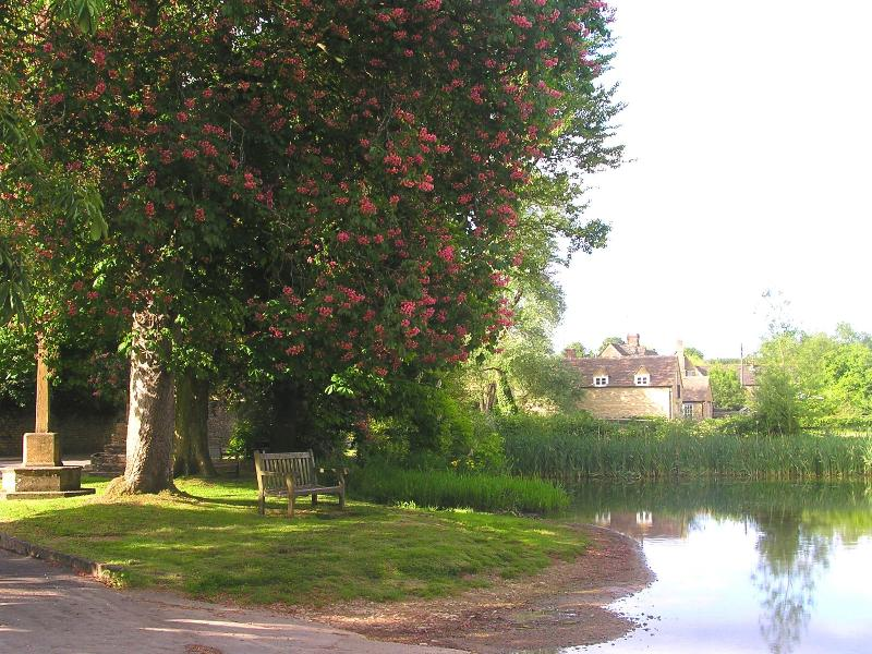 The Chestnuts, location de vacances à Clanfield