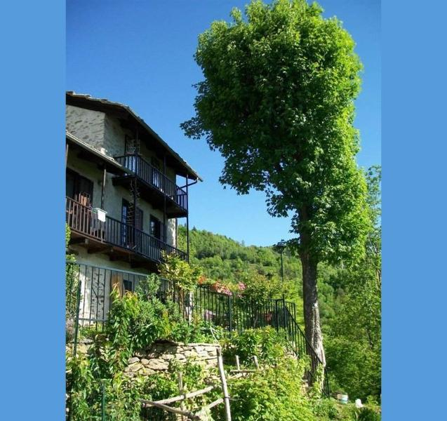 Il Nettare, vacation rental in Cavour