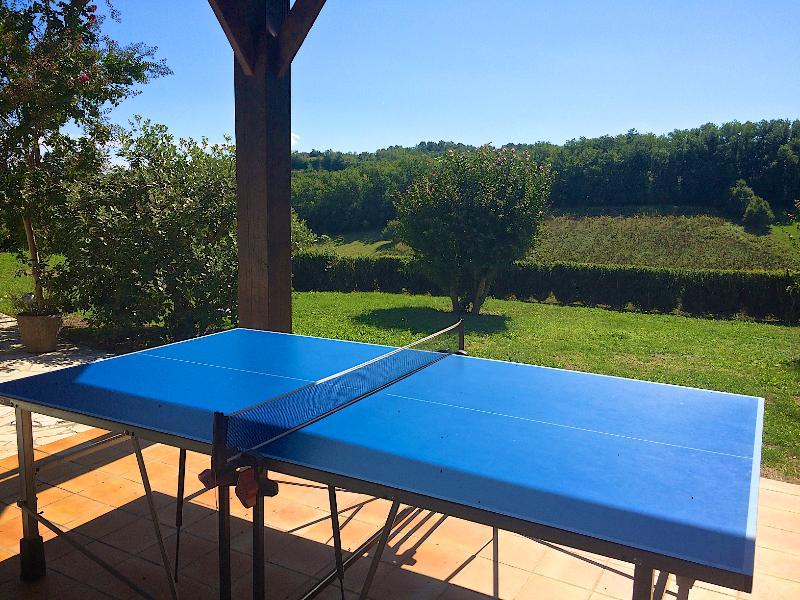 Table tennis and garden games