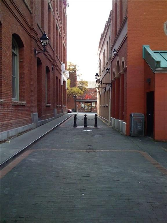 Waddington Alley adjacent to the Leiser Building