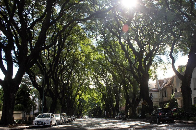 Melian Avenue.