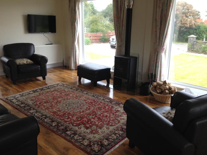 Beautiful light and homely sitting area with Scan Anderson stove, persian rug and leather suite