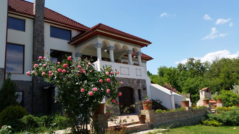 Beautiful villa in an astonishing countryside view, vacation rental in Valcea County