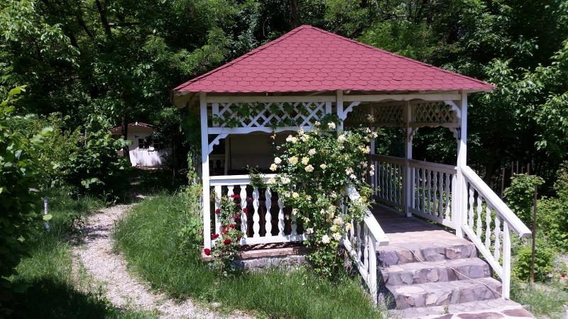 Gazebo by the forest edge