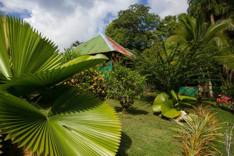 Vista panoramica del bungalow doble con vista a la piscina