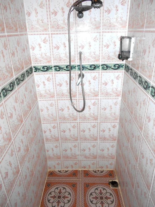 the hibiscus room shower
