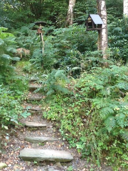 The Fairy Steps of Mistletoe lead to Mistletoe's own Bird Lodge feeding stations