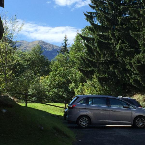 Carline  Chalet in Les Carroz