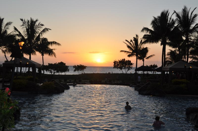 Infinity Pool at Sunset - ocean in background