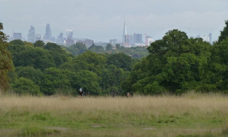 London skyscrapers viewed from Richmond Park