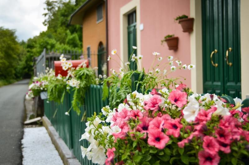 Colori fiori e profumi della natura danno il Benvenuto ai nostri Ospiti!!