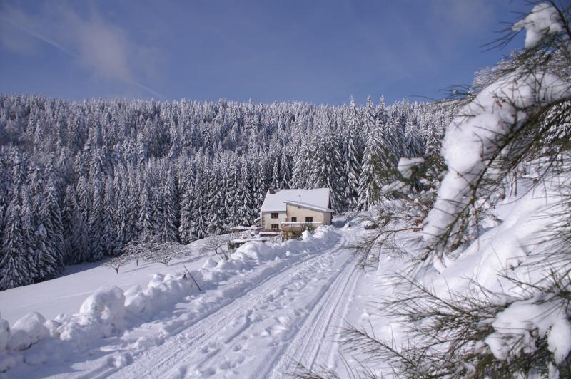 Le Domaine en hiver