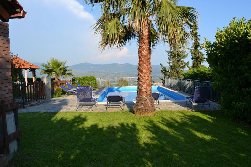 pool in garden