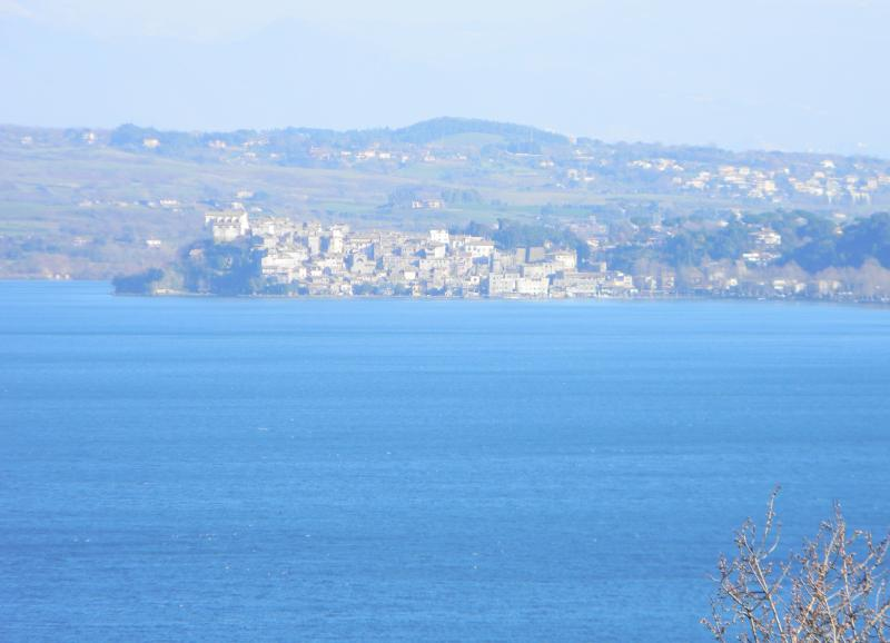 view of Anguillara by the window of the House