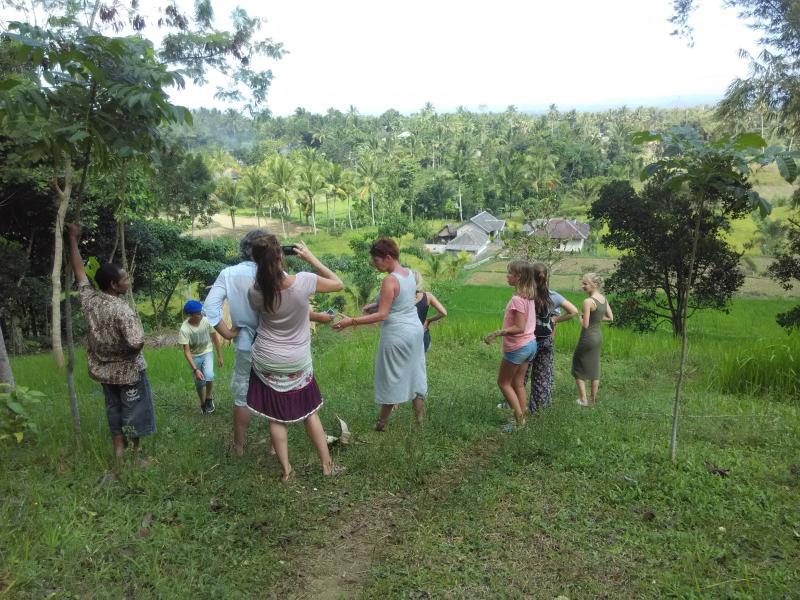 Pondok Tetebatu Paradise, vacation rental in Sikur