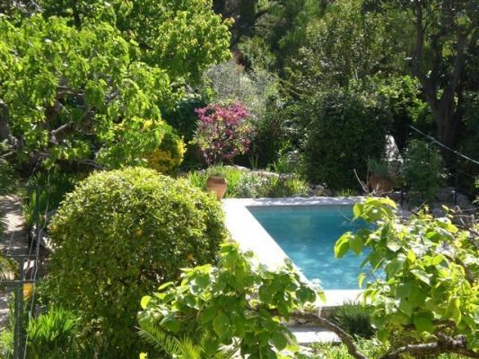Beautiful garden areas surrounding the pool.