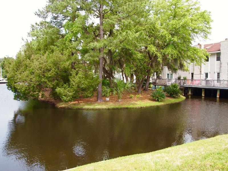 Nuestro barrio, Gascoigne, está construido alrededor de algunas lagunas, completo con tortugas y peces.