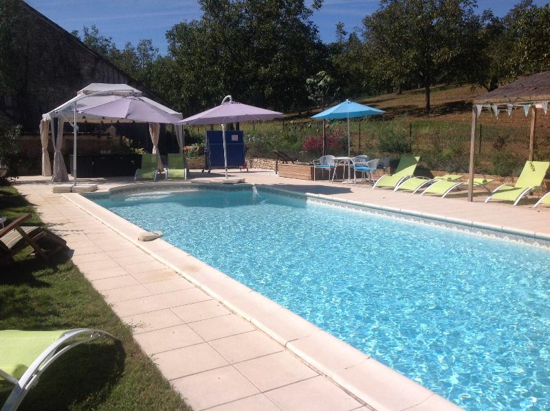 Private heated salt pool with sheltered dining area seating 12, loungers, table tennis refrigerator.
