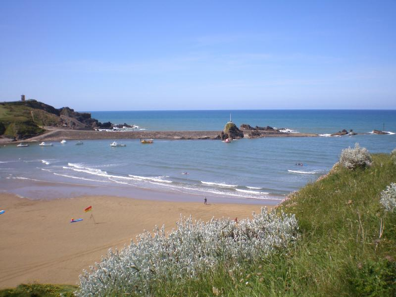 Summerlease Beach, Bude is just one of many beautiful beaches within easy reach of the farm