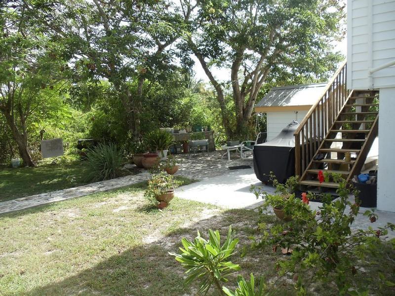 Área de patio trasero con parrilla
