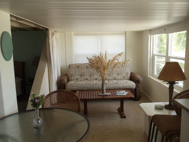 Sala de estar del apartamento y futón