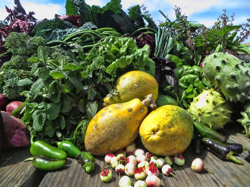Big Island organic fruits and vegetable basquet available upon request