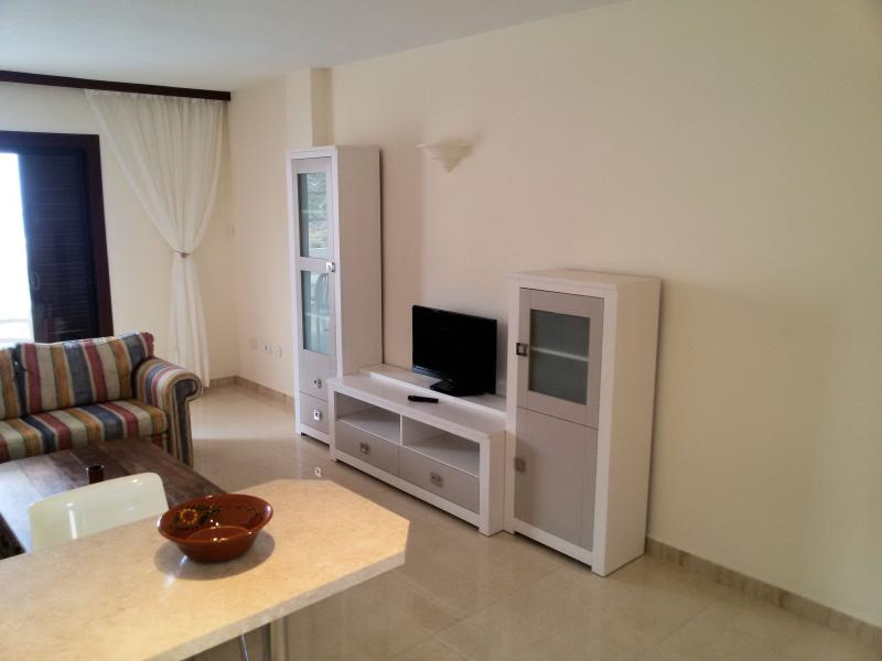 Living room with flatscreen TV, wifi-internet and sofa-bed