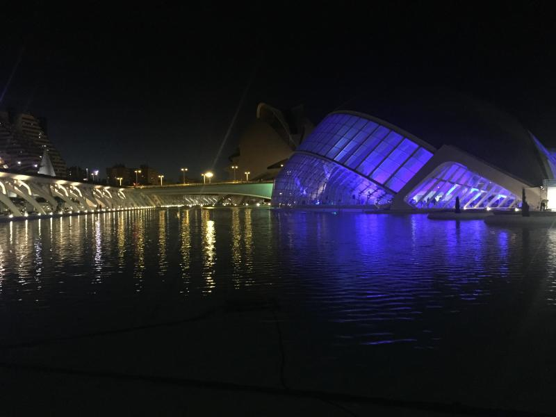 Vista nocturna Ciudad Artes y Ciencias. 10 minutos caminando