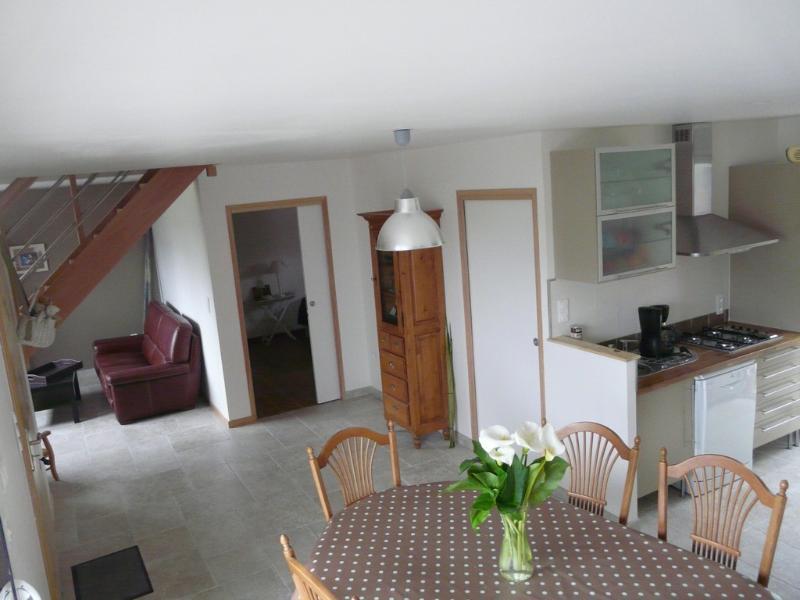 Salon/séjour ouvert sur cuisine. Table avec capacité 10 couverts