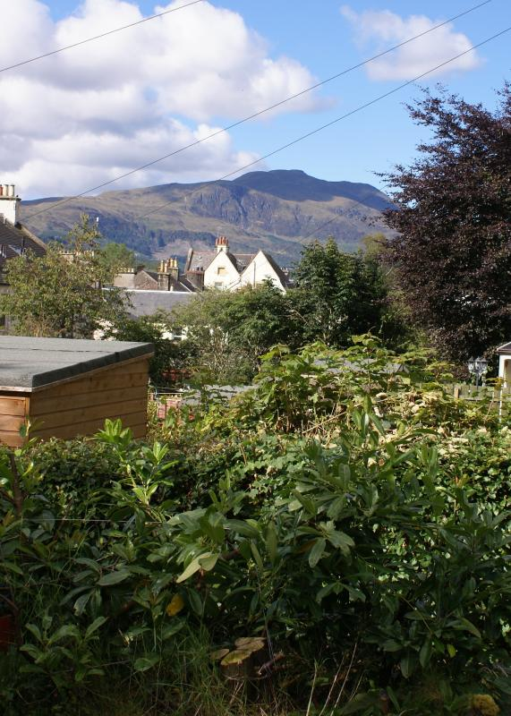 Ben Ledi from the garden