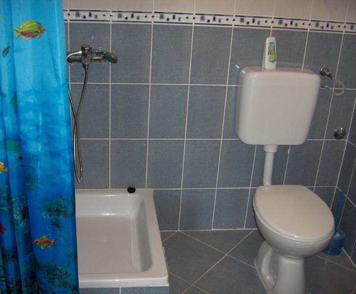 Lucija (2+2): bathroom with toilet