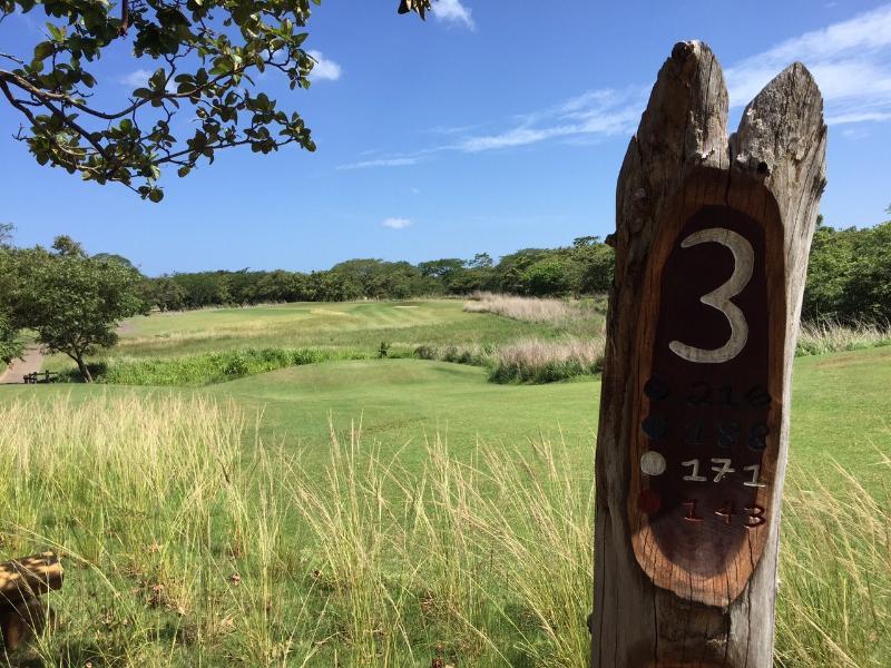 Hacienda Pinilla Golf course and Reserva Conchal golf course, 20 min drive away