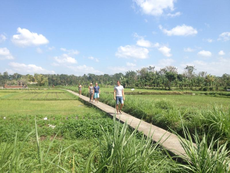 Enjoy a great walk through the local rice paddies while learning about the farming and irrigation