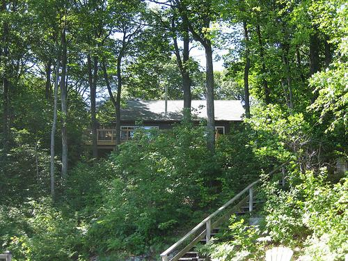 Waterfront cottage, sleeps 10,  dogs welcome, boat, holiday rental in Seguin Township