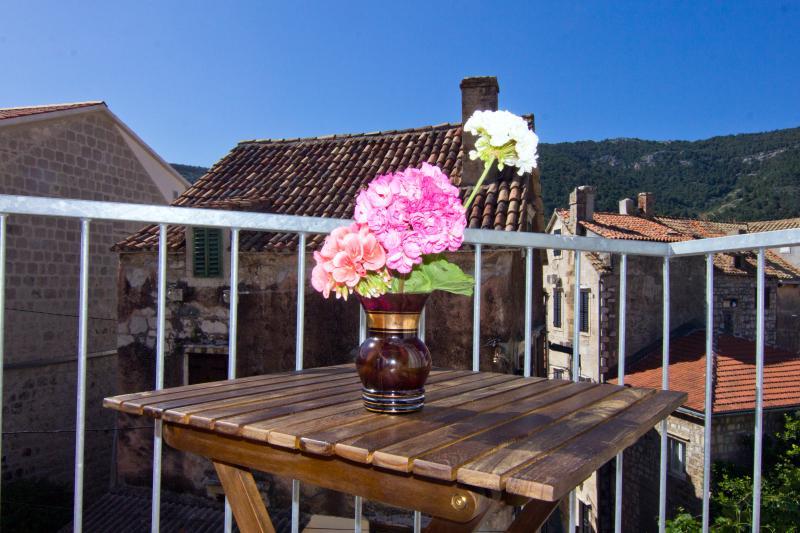 Balcony. Historic downtown. Center., holiday rental in Podhumlje
