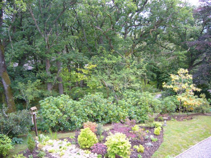 View out of upstairs windows onto landscaped gardens and bird feeders
