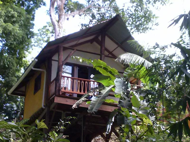 Casita Chalet Tropical with swimming pool, vakantiewoning in Bocas Town