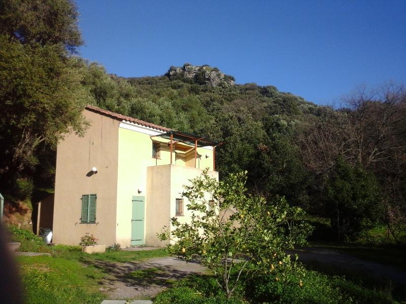 A CASA DI L'ALIVU Studio Castagnu, location de vacances à Barbaggio