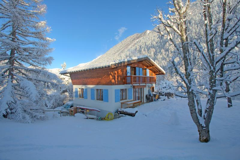 Chalet Clara from the side nestled between tall fir trees and with its own garden