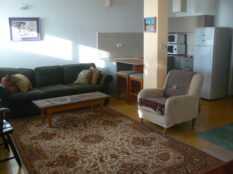 Studio Apt. - Living Room & Kitchen
